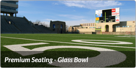 Premium Seating - Glass Bowl