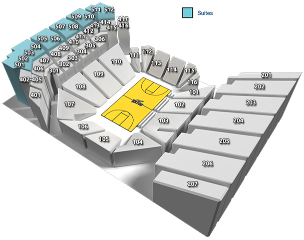 Savage Arena Seating Chart: Suites